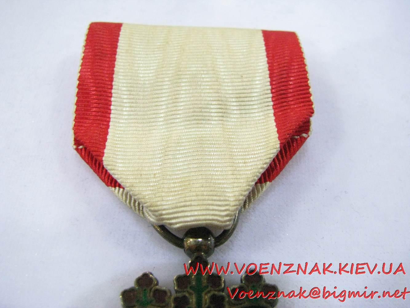 IMG 4635