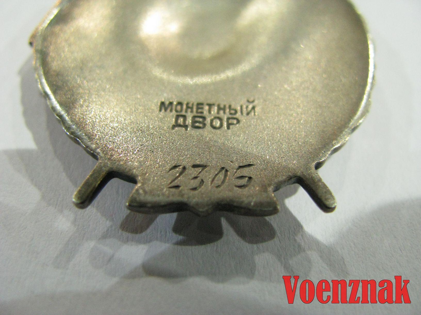 IMG 7753